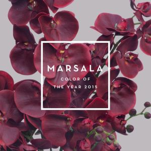 Marsala-Pantone Color of the Year: 2015